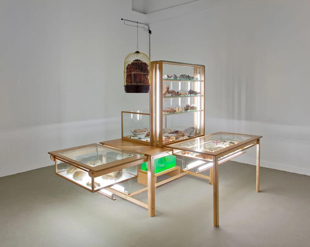מחקר לקראת האינדקס הקריפטו־טקסידרמי המלא / מוזיאון חיפה לאמנות - 2010