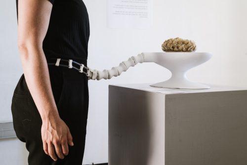 הגוף החש - The Sentient Body - ענת סבר
